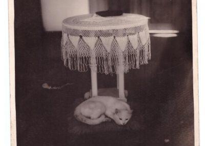 Holul internatului de fete de pe Alecu Sihleanu- 1934